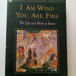 I am Wind You Are Fire - Life And Work of Rumi Second Hand Books