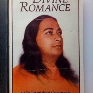 The Devine Romance Used Books