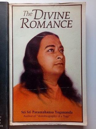 The Devine Romance Used Books